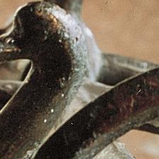 Kesselwagen aus Bronze Detail